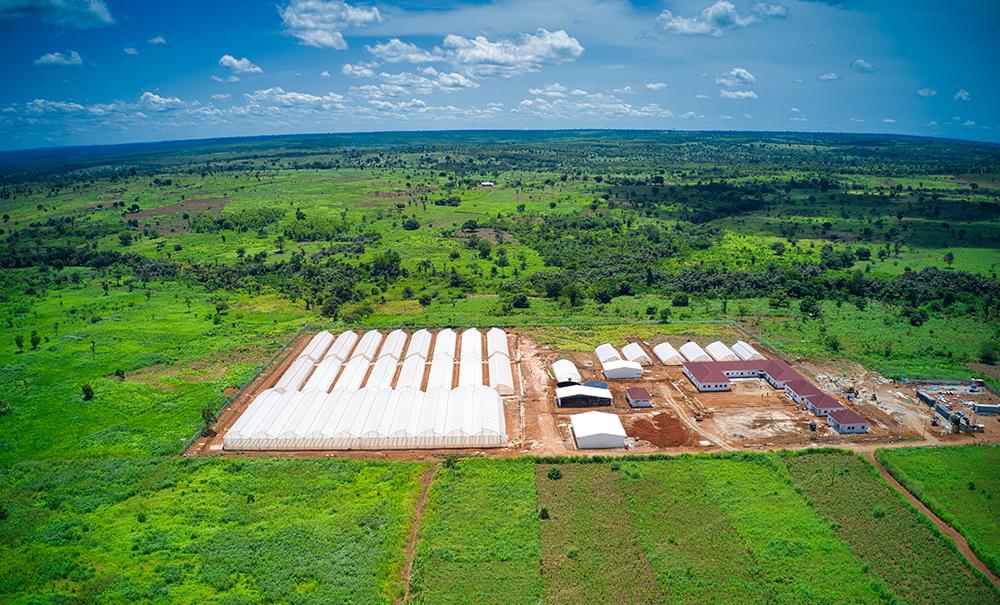 Agritop is opening a new greenhouse training center in Akumadan, Ashanti region.