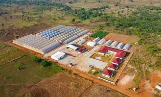 Akumadan Greenhouses and Training Center
