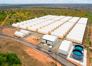 Agritop constructs 100 greenhouse kits