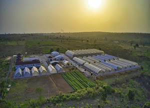 Agritop hands over greenhouse villages to mofa